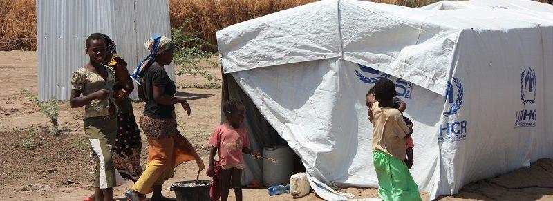 Humanitarian Advocacy